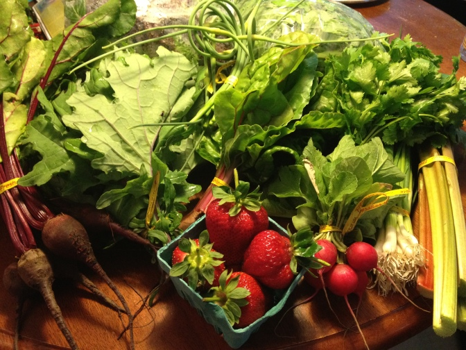 My first Echo Valley Farm CSA box